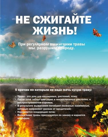 Не выжигайте сухую траву!