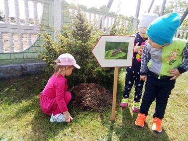 Чем больше дети будут узнавать природу,  тем больше они будут её любить!
